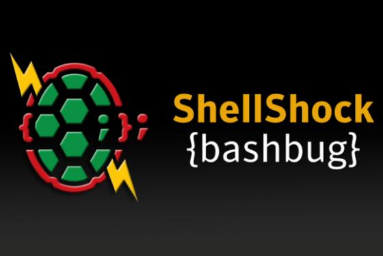 Shellshock-1