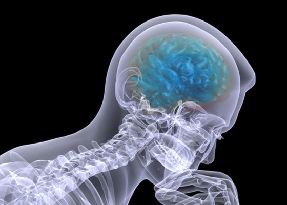Японские ученые провели успешный эксперимент по восстановлению памяти