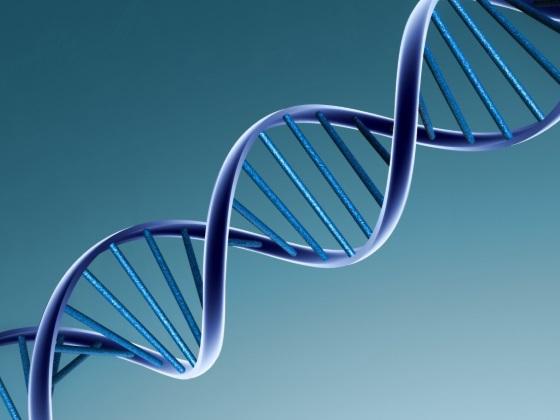 Ученые собираются хранить Терабайты данных в ДНК