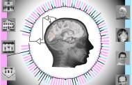 Ученые продвинулись в расшифровке мыслей человека