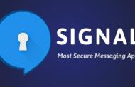 Мессенджер Signal начал тестирование видеозвонков