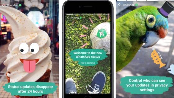 В WhatsApp появились анимированные самоуничтожающиеся статусы