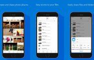 OneDrive для iOS научился заполнению форм в PDF