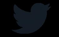 Веб-версия Twitter получила Ночной режим