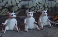 Пересадка стволовых клеток помогла мышам вернуть зрение