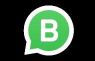 Приложение WhatsApp Business представили официально
